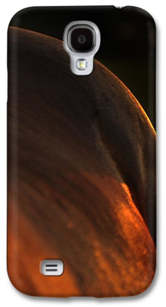 Horse Images Galaxy S4 Cases - Sunset Landscape Galaxy S4 Case by Renee Forth-Fukumoto