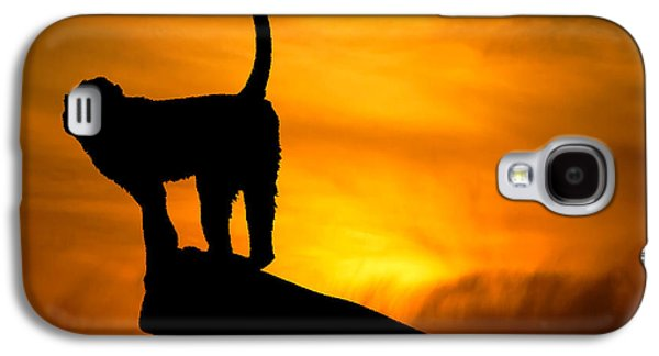 Light And Dark  Galaxy S4 Cases - Monkey / Sunset Galaxy S4 Case by Martin Newman