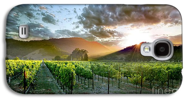 Napa Valley Vineyard Galaxy S4 Cases - Wine Country Galaxy S4 Case by Jon Neidert