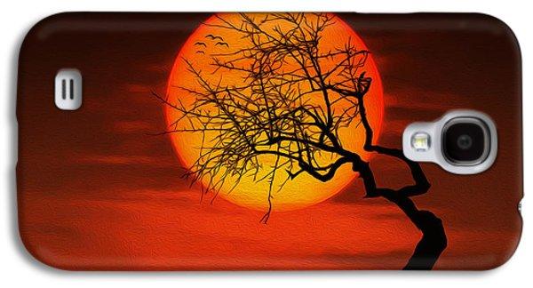 Amazing Sunset Galaxy S4 Cases - Sunset tree Galaxy S4 Case by Bess Hamiti