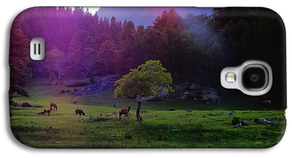 In The Shade Galaxy S4 Cases - Sunshine Galaxy S4 Case by Dan Sproul