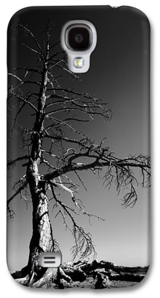 Southwest Landscape Galaxy S4 Cases - Survival Tree Galaxy S4 Case by Chad Dutson