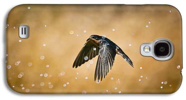 Swallow Galaxy S4 Cases - Swallow In Rain Galaxy S4 Case by Robert Frederick