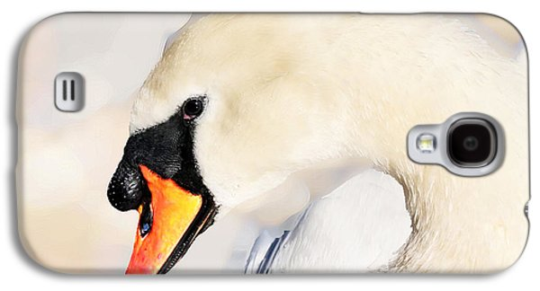 Nature Abstracts Galaxy S4 Cases - Swan Galaxy S4 Case by Bruce Iorio