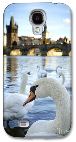 View Pyrography Galaxy S4 Cases - Swans on Vltava river Galaxy S4 Case by Jelena Jovanovic