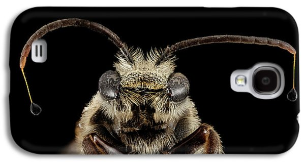 Sweat Bee Galaxy S4 Case by Us Geological Survey