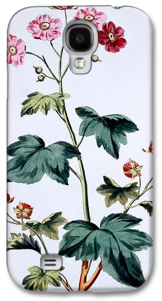 Sweet Canada Raspberry Galaxy S4 Case by John Edwards