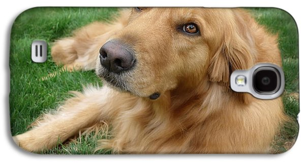 Puppies Galaxy S4 Cases - Sweet Golden Retriever Galaxy S4 Case by Larry Marshall