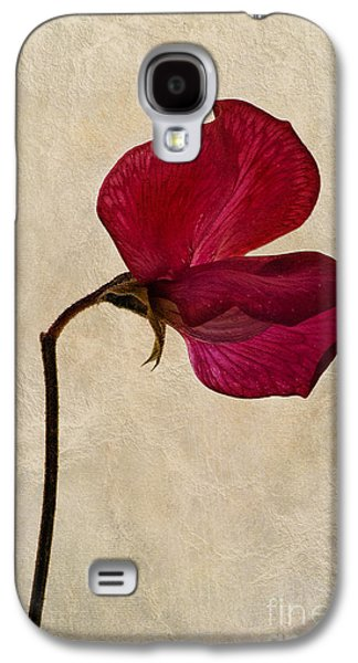 Close Focus Floral Galaxy S4 Cases - Sweet Textures Galaxy S4 Case by John Edwards