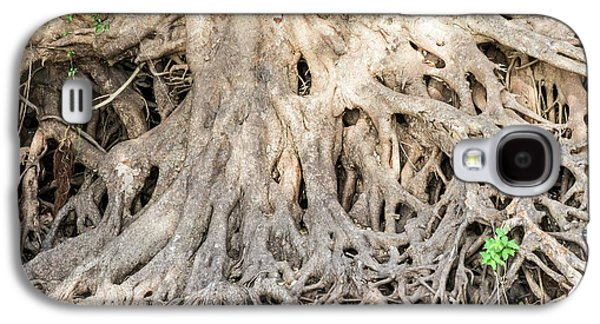Sycamore Fig Tree Roots Binding The Soil Galaxy S4 Case by Peter Chadwick