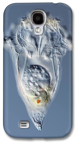 Synchaeta Rotifer Galaxy S4 Case by Gerd Guenther