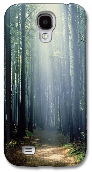 China Beach Galaxy S4 Cases - T. Bonderud Path Through Trees In Mist Galaxy S4 Case by First Light