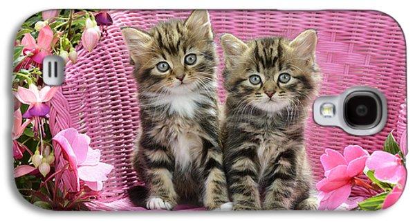 Chair Galaxy S4 Cases - Tabby Kittens Galaxy S4 Case by Greg Cuddiford