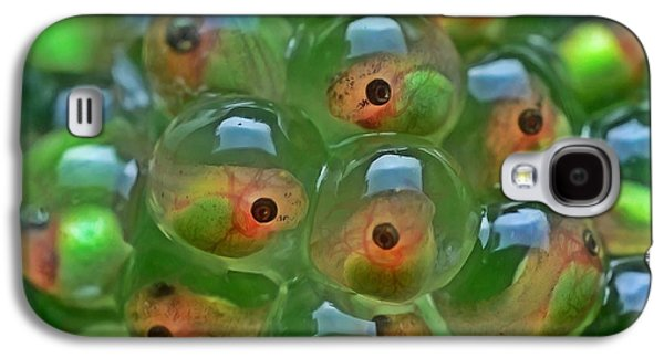 Spring Peepers Paintings Galaxy S4 Cases - Tadpole Galaxy S4 Case by Lanjee Chee