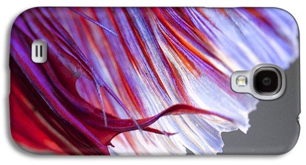 Betta Galaxy S4 Cases - Tail Betta Fish Galaxy S4 Case by Jennifer Gaida