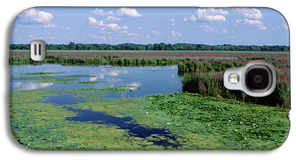 Wildlife Refuge. Galaxy S4 Cases - Tall Grass In A Lake, Finger Lakes Galaxy S4 Case by Panoramic Images
