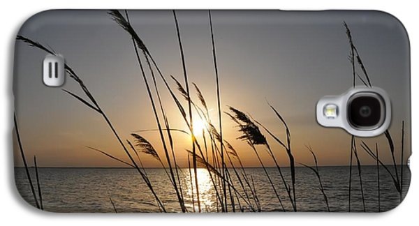 Sunsets Digital Art Galaxy S4 Cases - Tall Grass Sunset Galaxy S4 Case by Bill Cannon