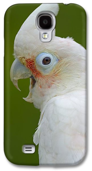 Tanimbar Correla Galaxy S4 Case by Tony Beck