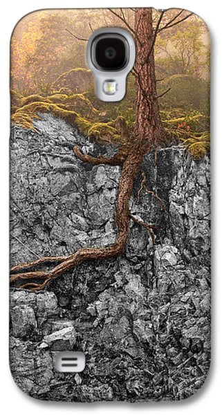 Tree Roots Photographs Galaxy S4 Cases - Taproot Galaxy S4 Case by Mary Jo Allen
