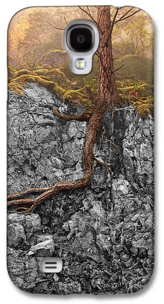 Taproot Galaxy S4 Case by Mary Jo Allen