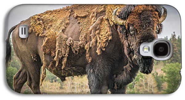 American Bison Galaxy S4 Cases - Tatanka - American Bison Galaxy S4 Case by Mark Mesenko