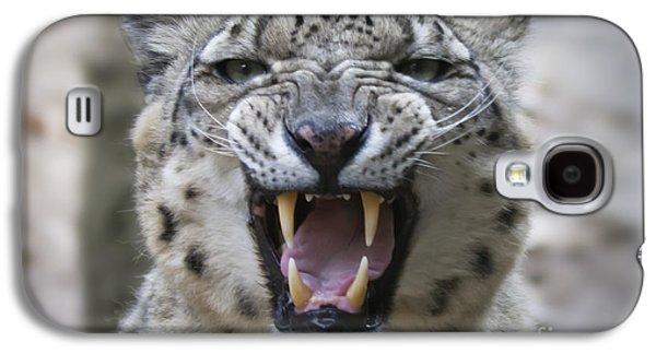 Leopard Pyrography Galaxy S4 Cases - Tenderness Galaxy S4 Case by Maurizio Bacciarini