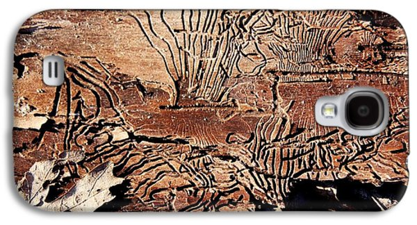 Termites Galaxy S4 Cases - Termite Trails Galaxy S4 Case by Kevin Grant