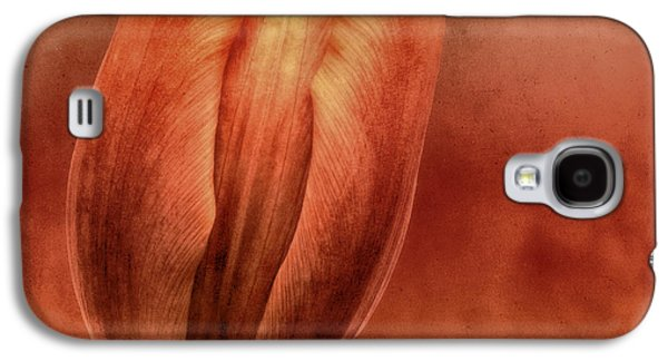 Abstract Digital Photographs Galaxy S4 Cases - Terracotta Galaxy S4 Case by Wim Lanclus