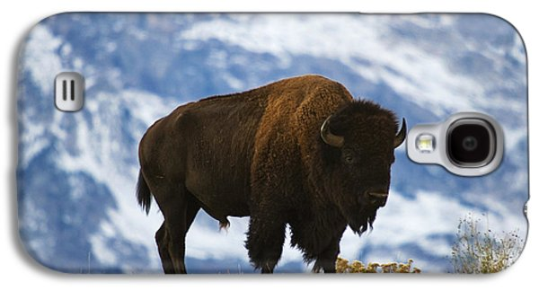 Teton Bison Galaxy S4 Case by Mark Kiver
