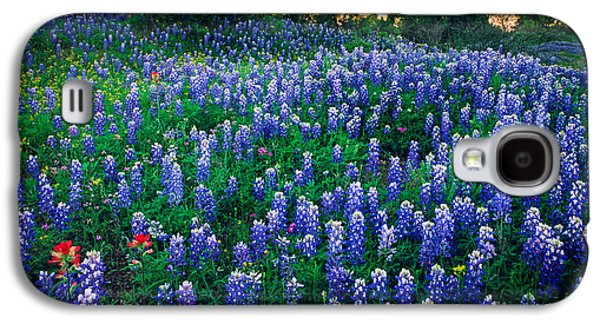 Harmonious Galaxy S4 Cases - Texas Bluebonnet Field Galaxy S4 Case by Inge Johnsson