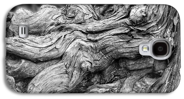Tree Roots Galaxy S4 Cases - Textures of Nature Black and White Galaxy S4 Case by Jack Zulli