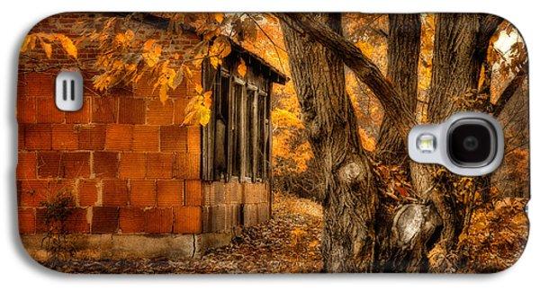Barn Yard Galaxy S4 Cases - That Which Defines us Galaxy S4 Case by Lois Bryan