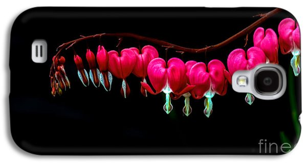 Haybale Galaxy S4 Cases - The Bleeding Heart Galaxy S4 Case by Robert Bales