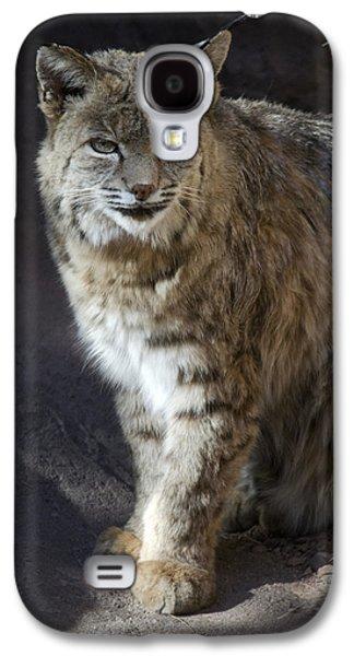 Bobcats Galaxy S4 Cases - The Bobcat Galaxy S4 Case by Saija  Lehtonen