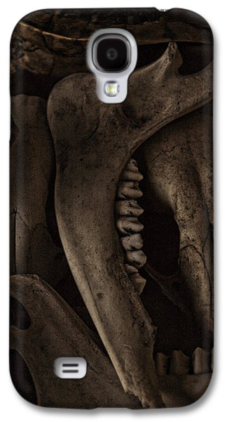 Recently Sold -  - Creepy Galaxy S4 Cases - The Boneyard Galaxy S4 Case by Casey Marvins