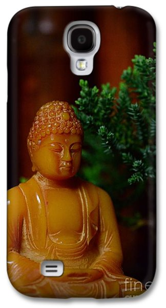 Inner Peace Galaxy S4 Cases - The Buddha Knows Galaxy S4 Case by Paul Ward