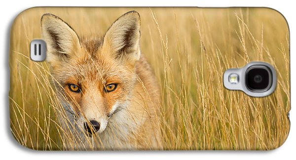 Frontal Galaxy S4 Cases - The Catcher in the Grass Galaxy S4 Case by Roeselien Raimond