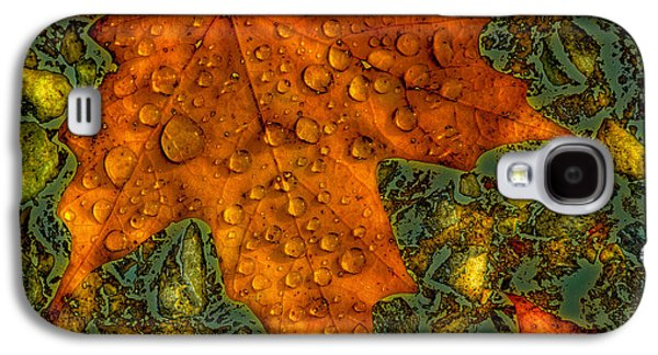 Surreal Landscape Galaxy S4 Cases - The Colors of Autumn Galaxy S4 Case by David Patterson