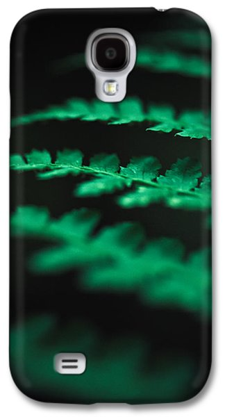 Ferns Galaxy S4 Cases - The Delicate Nature Of Ferns Galaxy S4 Case by Shane Holsclaw