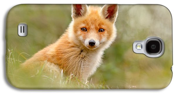 Fox Kit Galaxy S4 Cases - The Face of Innocence _ Red Fox Kit Galaxy S4 Case by Roeselien Raimond