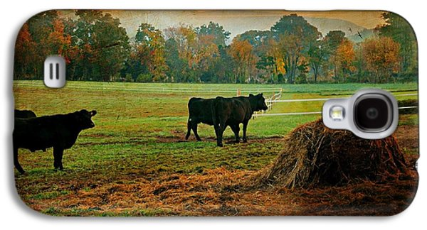Autumn In The Country Galaxy S4 Cases - The Far Side Galaxy S4 Case by Diana Angstadt
