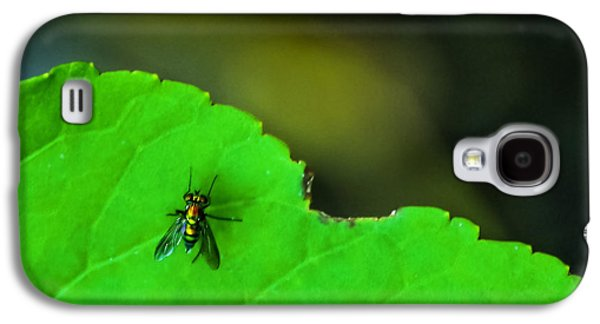 Bug Galaxy S4 Cases - The Fly Galaxy S4 Case by Marvin Spates
