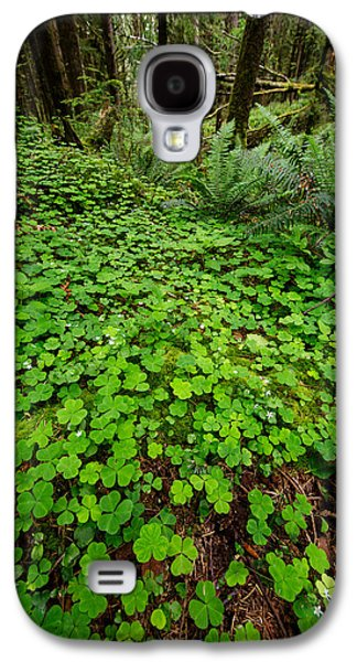 Forest Floor Galaxy S4 Cases - The Forest Floor Galaxy S4 Case by Rick Berk