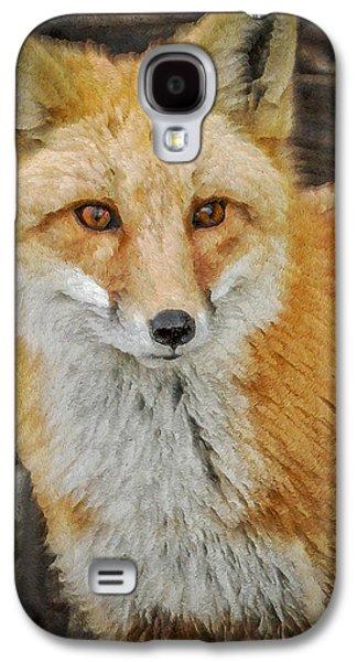Fox Digital Galaxy S4 Cases - The Fox 8 Galaxy S4 Case by Ernie Echols