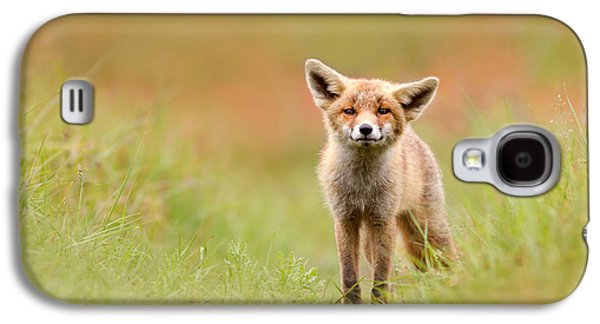 Red Fox Galaxy S4 Cases - The Funny Fox Kit Galaxy S4 Case by Roeselien Raimond