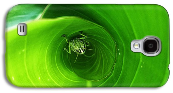 Business Pyrography Galaxy S4 Cases - The Grasshopper Flush Galaxy S4 Case by Rebecca Davis