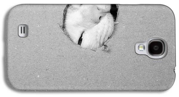 Cats Pyrography Galaxy S4 Cases - The hole - III Galaxy S4 Case by Nuria Puentes