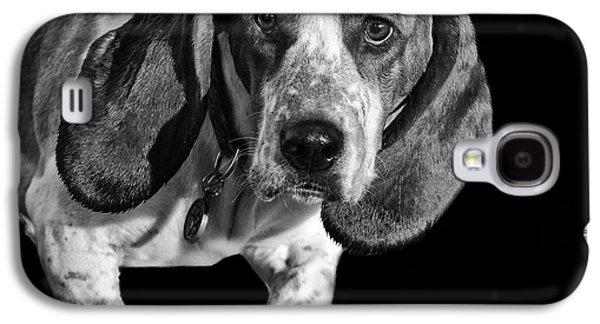 Puppy Digital Art Galaxy S4 Cases - The Hound Galaxy S4 Case by Camille Lopez