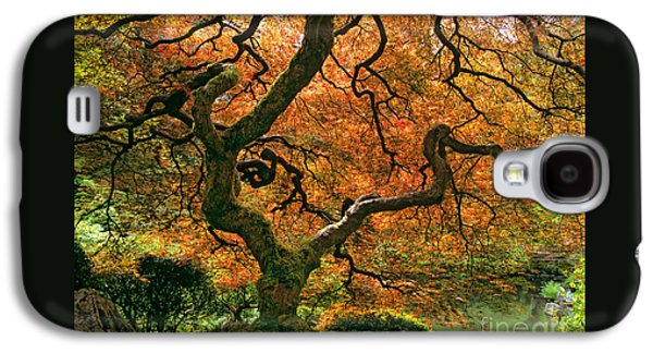 The Japanese Maple Galaxy S4 Case by Timm Chapman