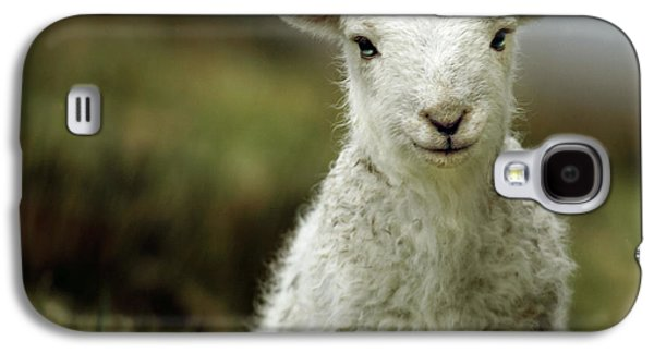The Lamb Galaxy S4 Case by Angel  Tarantella